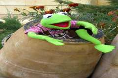 Jigsaw : Kermit in a Barrel